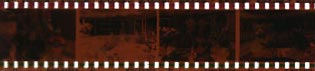 negative_film